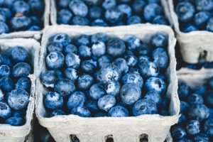 Pick-your-own farms near Birmingham? Up next: BLUEBERRIES!