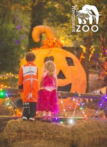 The Birmingham Zoo hosts Hoots & Howls starting Oct. 17th!