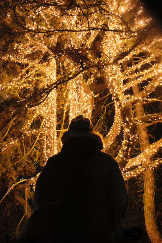 Where to see Christmas lights in the Birmingham area